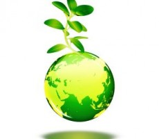 Going green with your loft conversions